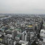 江戸川区で債務整理の無料相談ができる弁護士・司法書士一覧