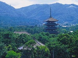 奈良市で債務整理の無料相談ができる弁護士・司法書士一覧