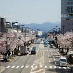 福井市で債務整理の無料相談ができる弁護士・司法書士一覧