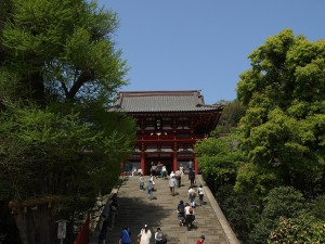 鎌倉市で債務整理の無料相談ができる弁護士・司法書士一覧