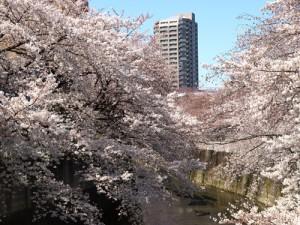 文京区で債務整理の無料相談ができる弁護士・司法書士一覧