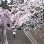 飯田市で債務整理の無料相談ができる弁護士・司法書士一覧