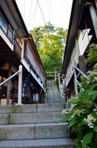 渋川市の画像